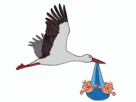 Zwei Bübchen zum Glück von Martin Stockmann - Storch